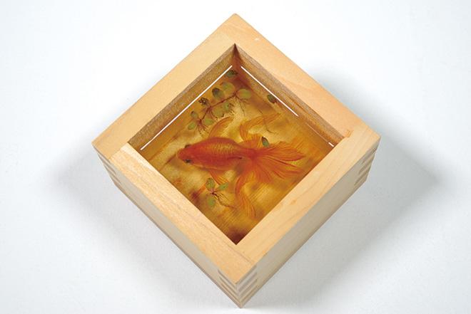 「金魚養画場〜鱗の向こう側〜」