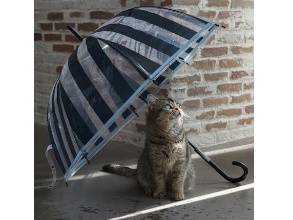 憂鬱な梅雨を楽しく過ごす、おすすめ最新レイングッズ3選の画像