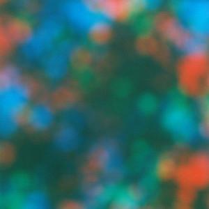 """""""純粋な色""""を考察、写真家 濱田祐史の個展が開催"""