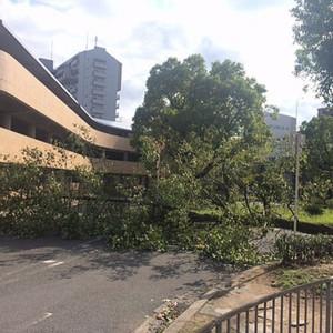 台風21号、近畿から北陸・東海に大きな被害