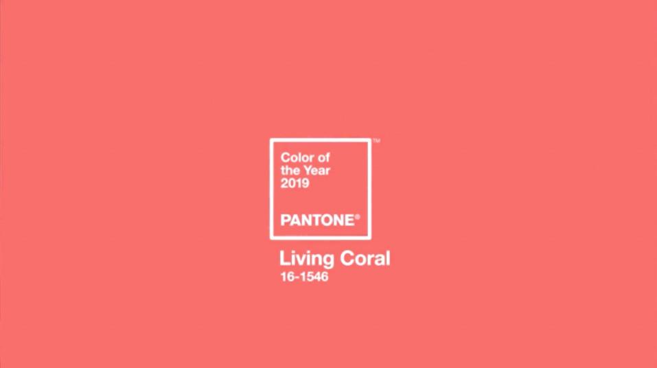 PANTONE®の公式サイトより