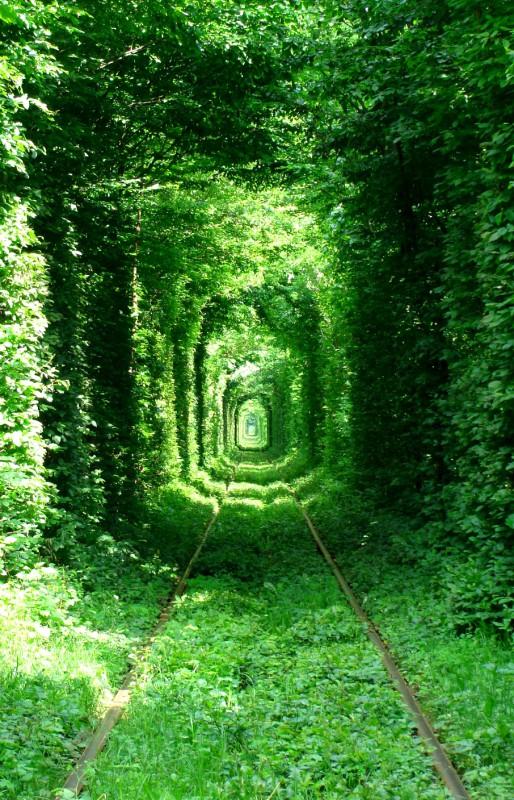 love_tunnel_0610.jpg