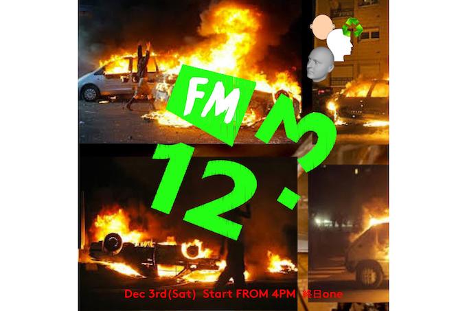 fm12.3_1128_1.jpeg