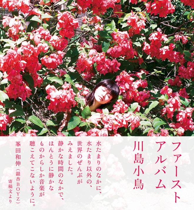 kawashimakotori-20161116_001.jpg