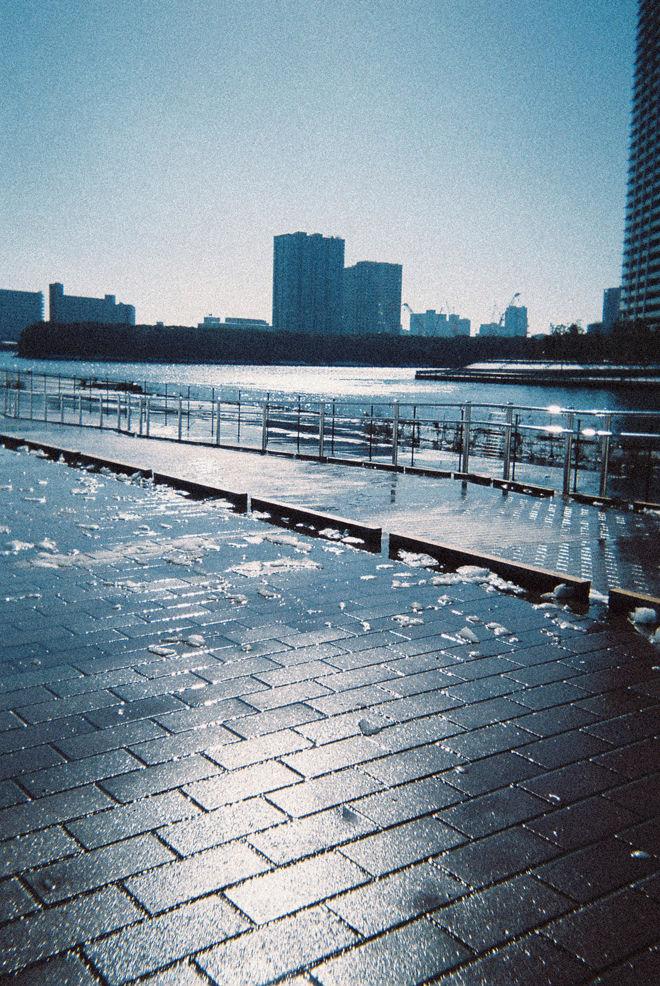 1-8yagisaki.jpg