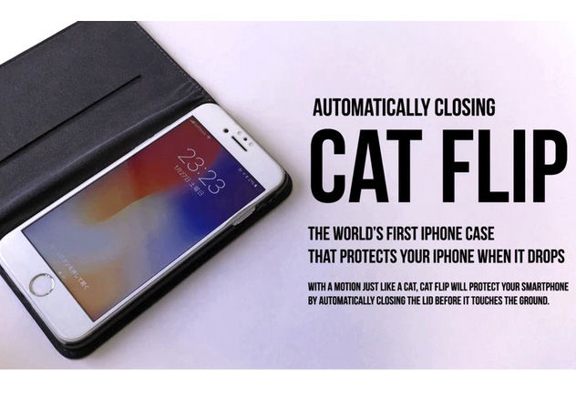cat-flip-20180208_003.jpg