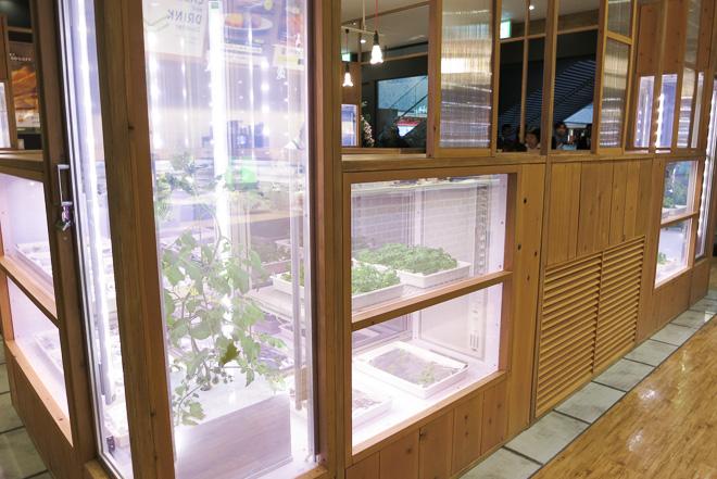 granfront_osaka_daikaibo-20130423_320.jpg